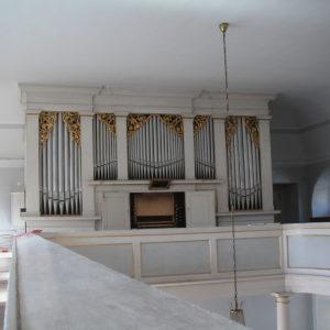 Erfurt Martinskirche - Orgelprospekt
